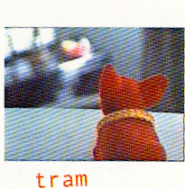 Tram's Cover (by izzi)